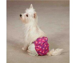 Contech stay away pet deterrent